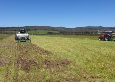 Carbon Farming at Dromana