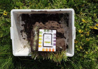 Dromana Soil pH